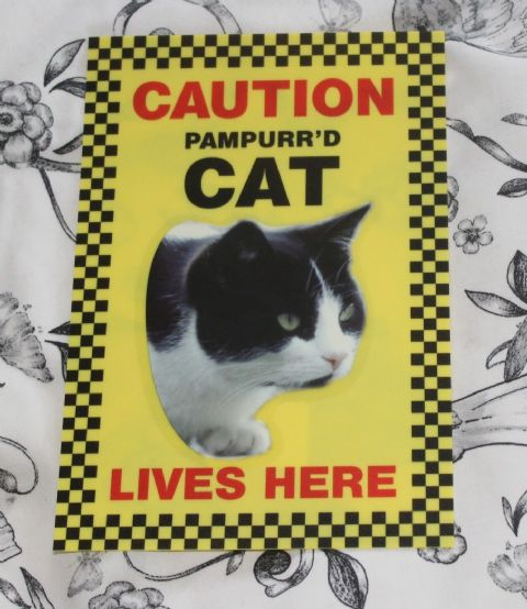CAUTION PAMPURR'D CAT LIVES HERE (black & white pic)  -  CAT SIGN